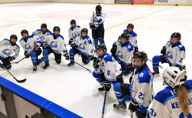 Moona Keskisarja oli osa Ylivieskan Jääkarhujen nimen alla pelannutta alueellista yhdistelmäjoukkuetta, joka voitti C-tyttöjen SM-hopeaa vajaa vuosi sitten.