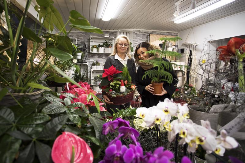 Hanhinevan puutarhan yrittäjä Eija Hanhineva kertoo, että heidän messuosastollaan tulee näkymään kukkien lisäksi myös sisustuspuolta, mikä ilahduttaa messujen tapahtumapäällikkö Titta Tilvistä.