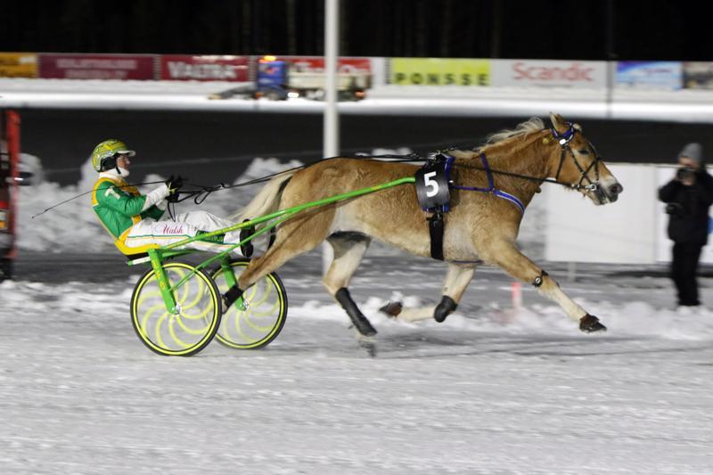 Pikku-Ryti toi huippuohjastaja Tim Tetrickille tämän ensimmäisen voiton Suomen kamaralla.
