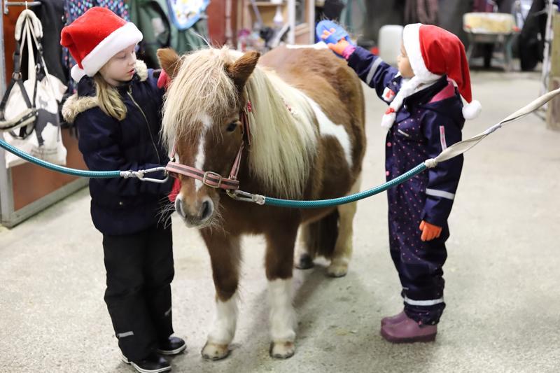 Centa harjataan, että pienet tonttukerholaiset pääsevät ratsastamaan. 8-vuotias Nella Junttila ja 5-vuotias Stella Kamau ovat laittateet Centan harjaan myös lettejä juhlan kunniaksi.