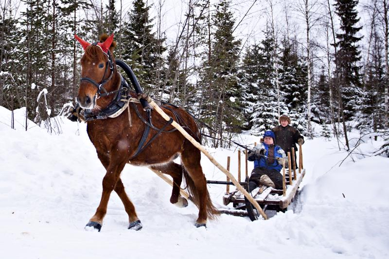 Kirjoittaja muistelee nuorena poikana tekemäänsä puuajoreissua hevosella talvipakkasella. Tässä kuvassa reessä istuvat nivalalaiset Niilo Ampula ja Raimo Kaarlela.