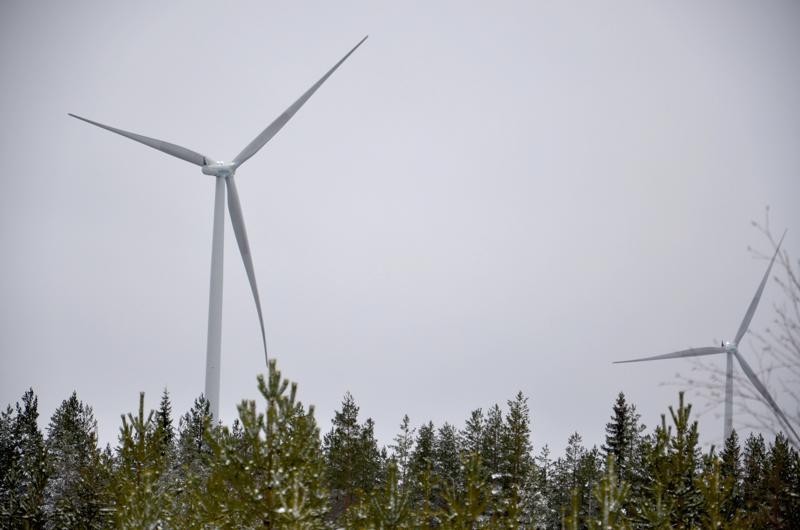 Toholampi-Lestijärven alueelle rakennetaan tuulivoimapuisto. Kuva on Merijärven Ristivuoren alueelta vuodelta 2014.
