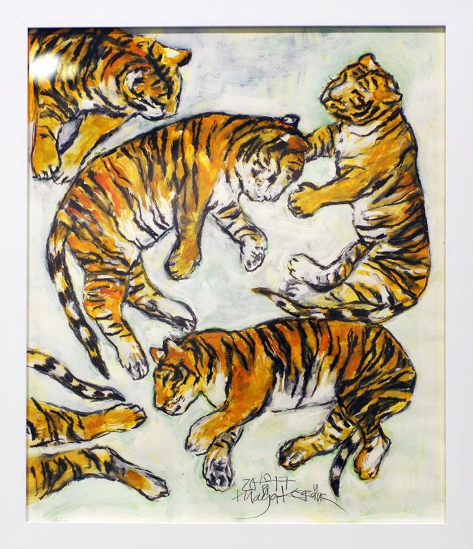 Amurin tiikerit.