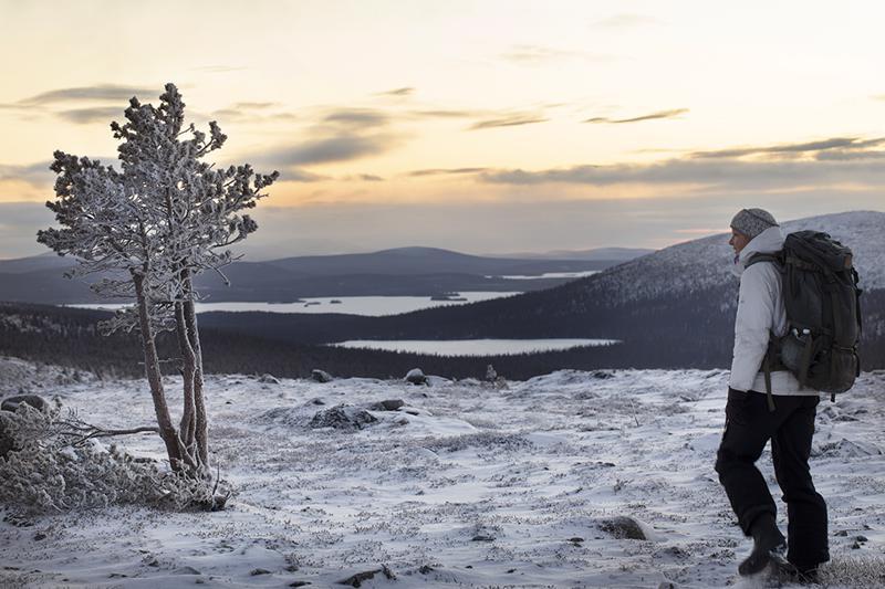 Pallas-Yllästunturin kansallispuisto on yksi niistä Suomen 40 kansallispuistosta, johon luontokuvaaja Tea Karvinen perehtyi tehdessään kirjaansa.