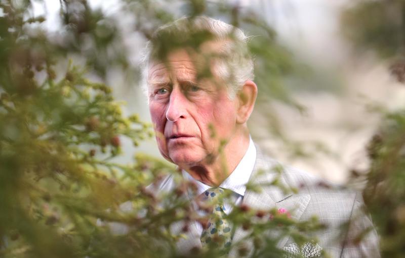 Omissa maailmoissaan. Prinssi Charles vaikuttaa välillä toisaikaiselta, mutta hän on kiinnostunut ihmisistä ja kulttuurista.