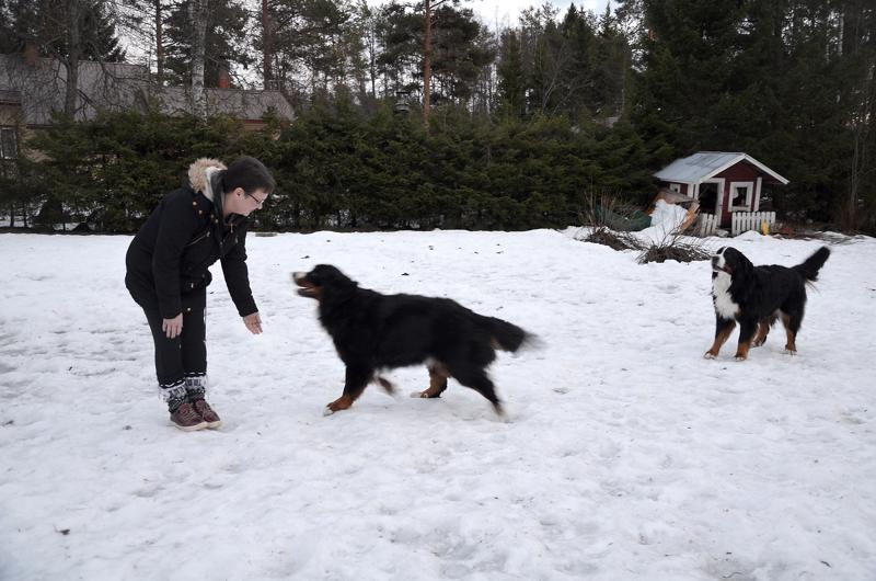 Anu Saukko liikkuu paljon ulkona perheen koirien kanssa, koska nyt jaksaa paremmin kuin vuosi sitten, jolloin painoi puolet nykyistä enemmän.