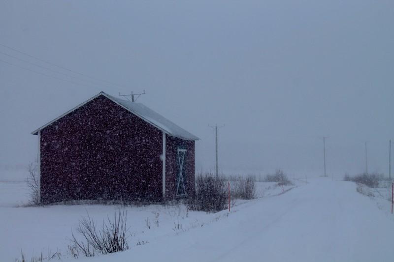 Talven tuntua 24.2.2020.