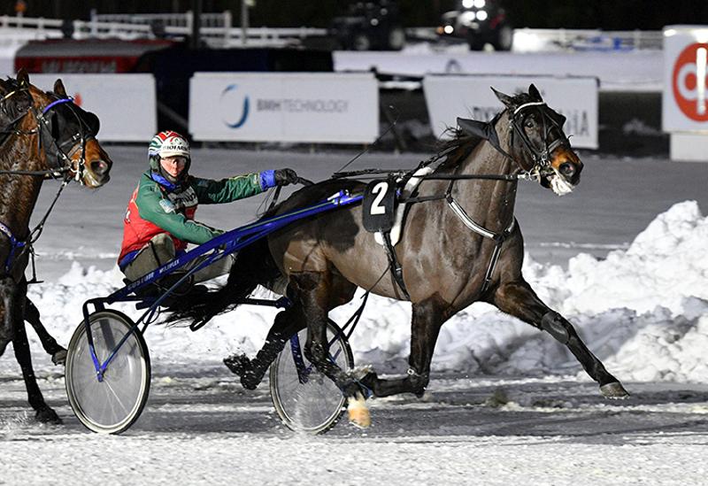 Petri Klemolan valmentama Trouble Leader hakee Kaustiselta uransa 13 voittoa.