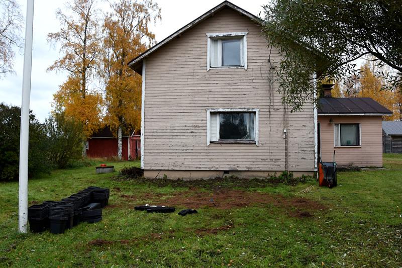 Haapavedellä kasvattamo toimi Koivikonperällä, lähellä Kärsämäen rajaa sijaitsevassa omakotitalossa. Haapavesi-lehti kertoi viime lokakuussa, että keskusrikospoliisilla oli ollut paikalla operaatio, josta talosta tyhjennettiin kannabisviljelmä. Siinä vaiheessa poliisin tiedotuslinja asiasta oli hyvin niukka.