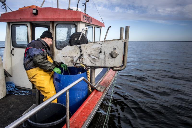 Kalastaja Harri Lahden maisemakonttorista on huikeat näkymät.