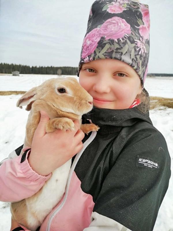 Helmillä on lemmikkinä kymmenen kania ja koira.