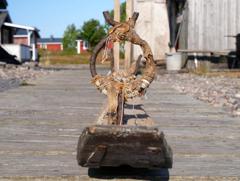 Hylkeenpyynnissä käytetty kulkuväline, jossa on myös alusta ja kivääriteline. Ajopuu kuvattu edestäpäin Kolapäädyn pitkospuilla.