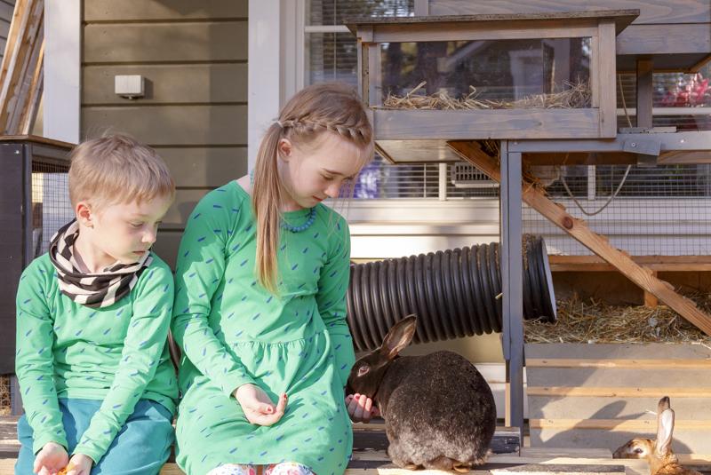 Hugo ja Lilja Somero ruokkivat yhdessä kanejaan porkkanaraasteella. Viuhti on hieman rohkeampi, mitä alempana odotteleva Nöpö.