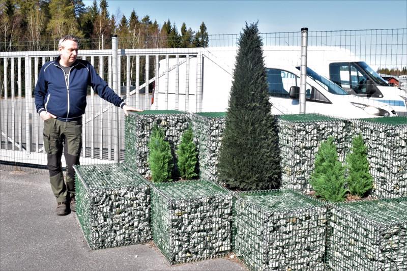Kivi voi olla yllättävän ilmeikäs tausta viherkasveille, Kaj Hjortman näyttää.