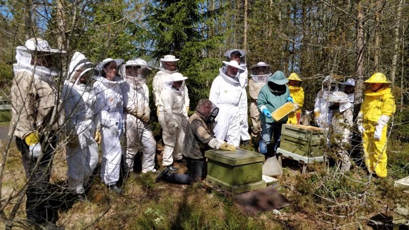 Mehiläishoitokurssilla Aappo Valo ja Timo Marjusaari opastivat pariakymmentä aiheesta kiinnostunutta kurssilaista.