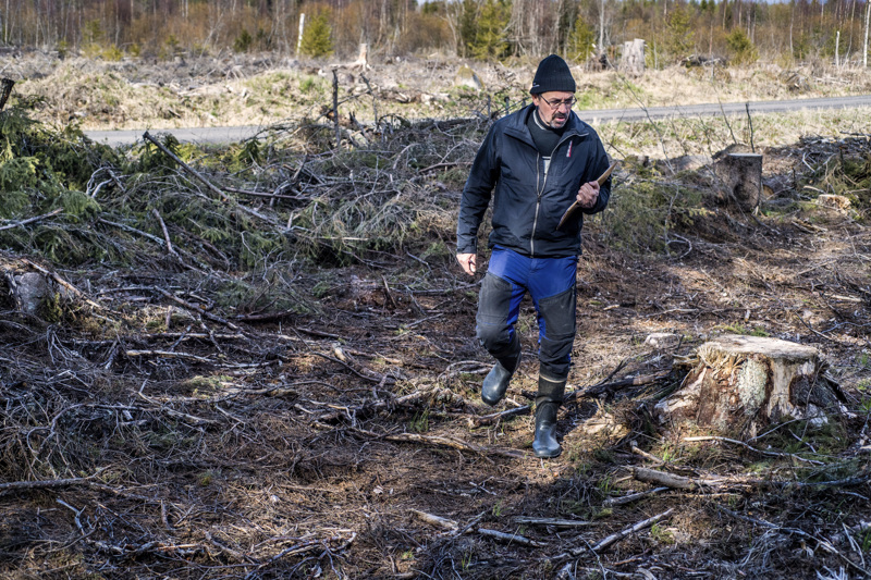 Raahelainen Jari Särkkä on tehnyt ensimmäiset havainnot Kasviatlakseen 1980-luvulla. Tuolloin esimerkiksi leskenlehti ja osmankäämi oli harvinaisuus.
