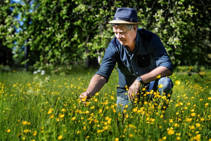 Salmela nauttii kesäisin luonnon omista kukkapenkeistä.