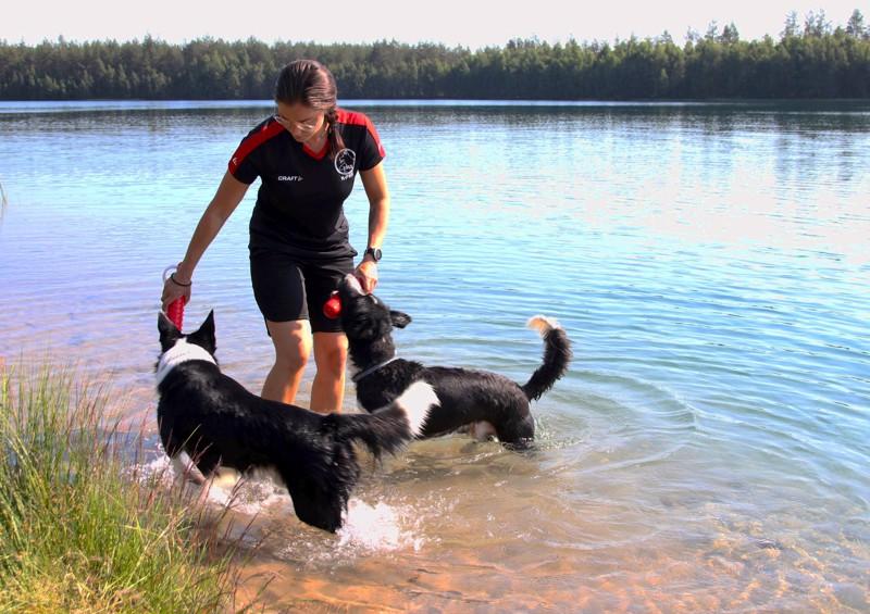 Lotta Lindberg käy uittamassa koiriaan Capoa ja Donia lähes päivittäin. Hän vinkkaa useiden käyvän uintireissuilla Överbyssä sekä Kruunupyyssä sijaitsevilla soramontuilla.