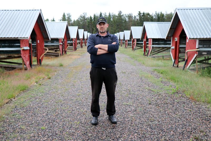 Kaustisen seudun turkistarhaajien puheenjohtaja Marko Rahkonen turkistarhallaan.