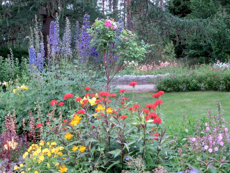 Ullan puutarha kukkii läpi kesän.