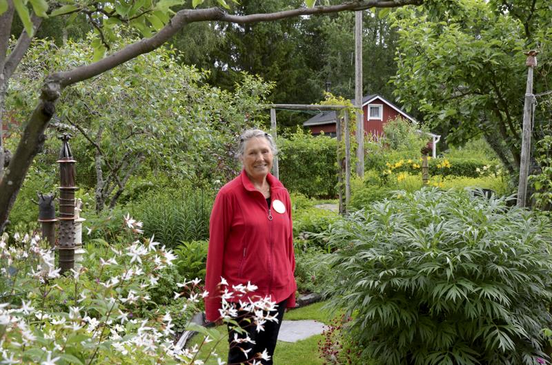 Liisa Torikka oman puutarhansa pihalla Tullimäen siirtolapuutarhassa.