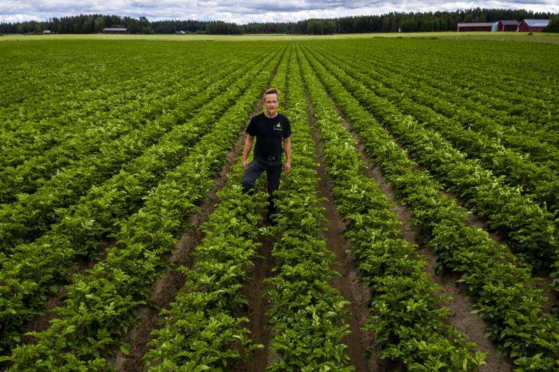 Kimmo Mäkelä mittaa ja tilastoi sademääriä tarkkaan Mäkelän perunatilalla. Kuiva kesäkuu pakotti kasteluhommiin.