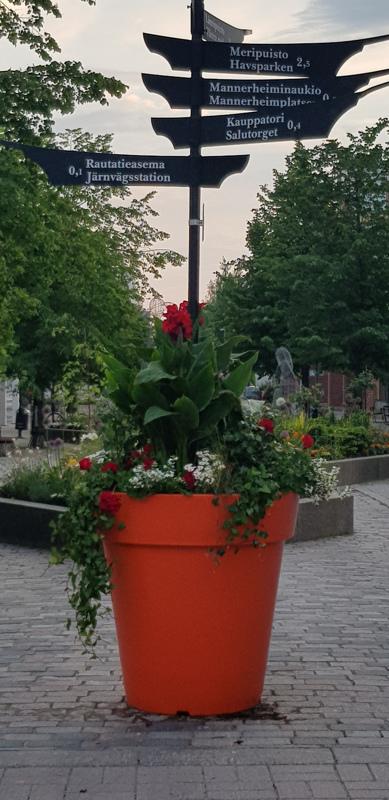 Kukkaistutus Kokkolan keskustassa.