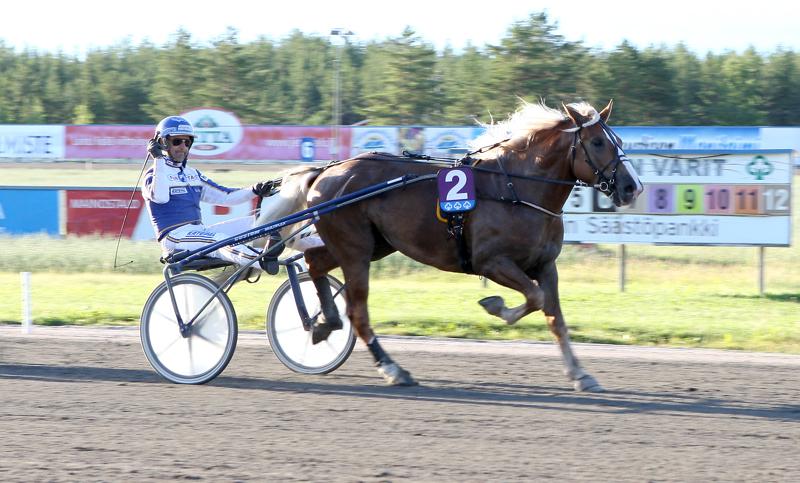 Maurizosta leivottiin Pikkupelimanni-ajon sankari hevosen uran kolmannessa startissa. Esa Holopainen ajoi voittajaa.