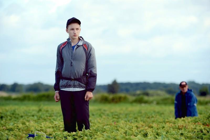 Wojtek (Stanislaw Cywka) tulee Puolasta Ruotsiin poimimaan mansikoita perheensä kanssa, kohtaa ennakkoluulot ja ensirakkauden.
