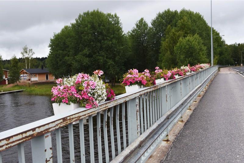 Kirjoittaja kiittelee Haapaveden panostusta kukkaistutuksiin pääväylien varsilla ja toivoo Nivalan ottavan naapurista mallia.
