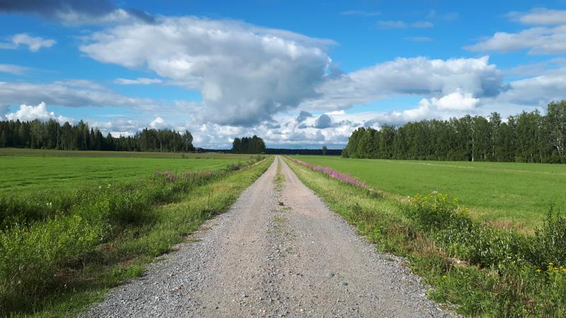 Voisi luulla, että näin kauniissa maisemissa asuisi vain säyseitä ja lempeitä eläimiä.