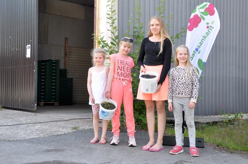 Taru ja Inka Niemi, Sanna Läspä ja Maisa Niemi toivat Vetelin marja-asemalle 6,6 kiloa mustikkaa.