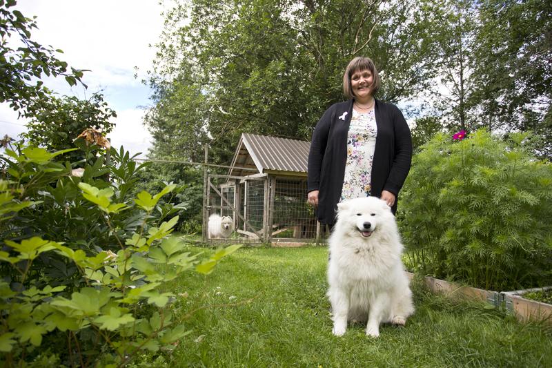 Asta Ojatalon perheeseen kuuluvat mies, viisi lasta ja kaksi koiraa. Samojedi Hilja pääsi emännän kanssa kuvaan. Hugo katselee tarhasta kiinnostuneena, mitä pihapiirissä oikein puuhaillaan.