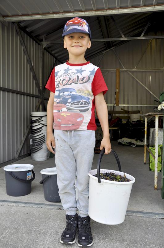 Reipas marjanpoimija Aapo Nikula aikoo ostaa legoja saamillaan rahoilla.