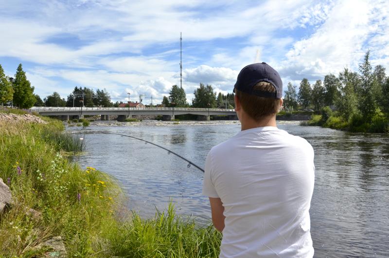 Ylivieskan keskustassa oleva Juurikoski kuuluu ELY-keskuksen lähivuosien kehityskohteisiin. Ville Kokko kalastelee Juurikoskessa säännöllisesti.
