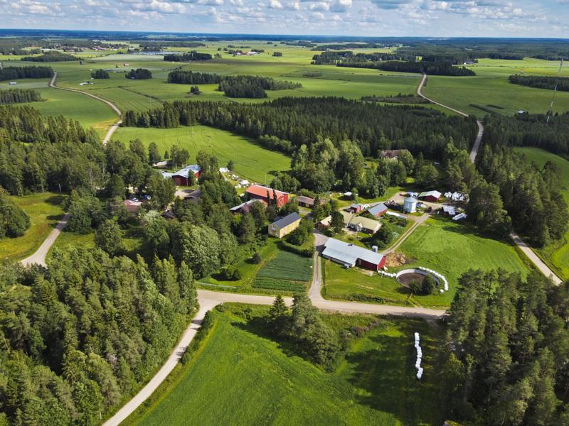 Junno on kaikkea muuta kuin pieni kylä syrjäseudulla. Ypyä-Junno-kylätie (kuvassa oikealla) voitti vuonna 1997 Valtakunnan kaunein maitotie -kilpailun, ja vuotta aikaisemmin se nimitettiin vuoden kyläksi.