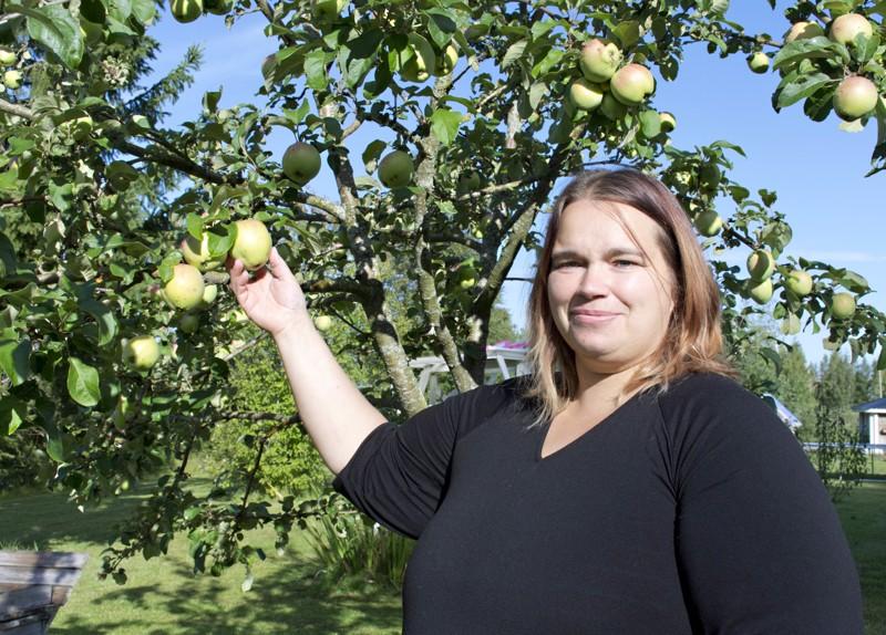 Soile suunnittelee tekevänsä  omenista mehua.