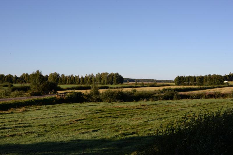 Reisjärven tilusjärjestelyssä on tällä hetkellä mukana 40 tilaa ja vajaat 3000 hehtaaria peltoa. Kuvan pellot eivät välttämättä ole mukana edellä mainituissa, sillä kyseessä on kuvituskuva.