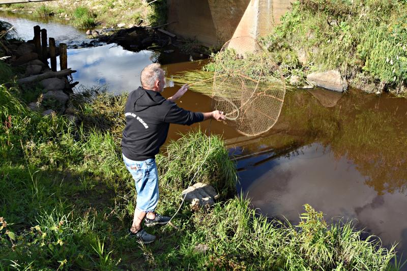 Kaloja alkoi kuolla Piipsanojassa keskikesällä. Ely-keskuksen vesitalousasiantuntija ennustaa, että toipuminen kestää pitkään.