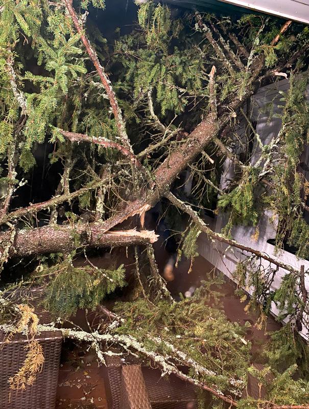 Tässä lukijan kuvassa puu on ilmeisesti kaatunut terassikalusteiden päälle.