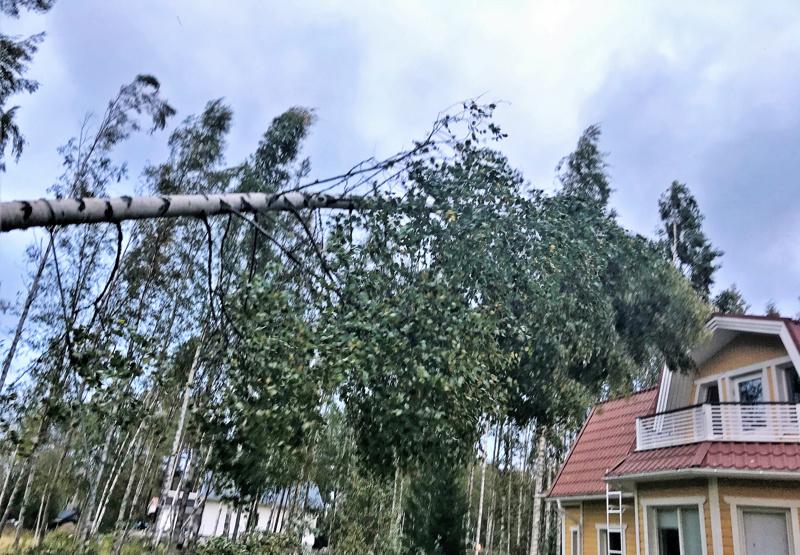 Luodossa puu uhkasi omakotitaloa.