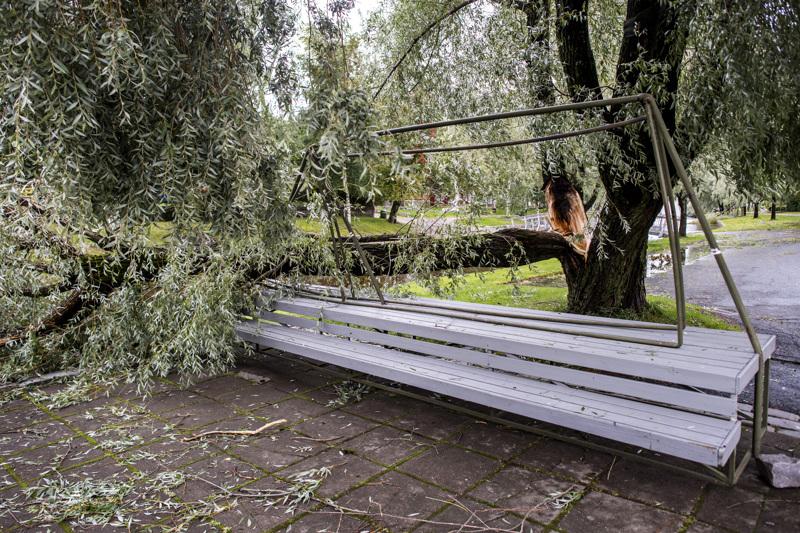 Myrskyn jälkiä Kauppatorilla.