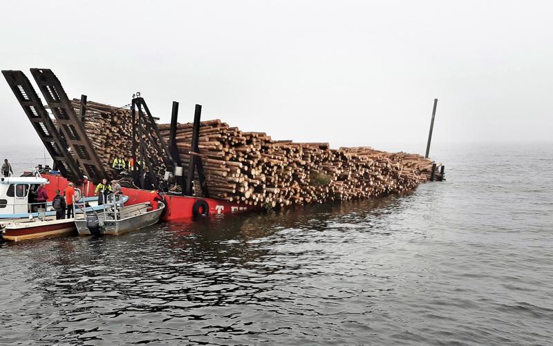 Proomussa oli arviolta 800 kuutiota puuta.