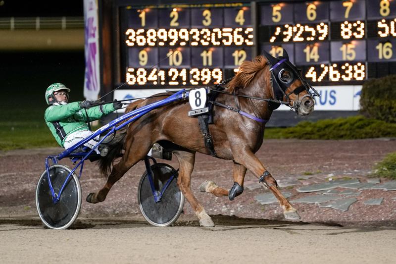 Niko Jokela istahti ensimmäistä kertaa Primakan kärryille ja tuloksena oli hevosen uran ensimmäinen voitto.