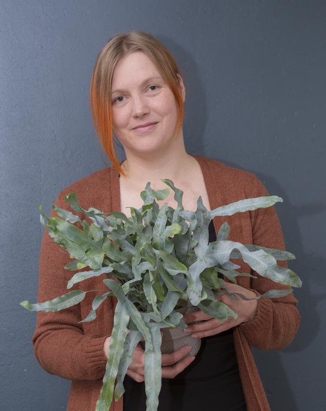 Floristi Hanna Niemi seuraa viherkasvien markkinoita tiiviisti, jotta osaa ennakoida trendit ja saatavuuden.