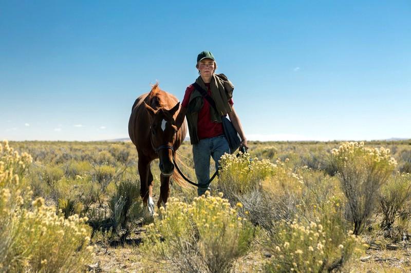 Orpopoika Charley (Charlie Plummer) tukeutuu hevoseensa Peteen pitkällä matkalla tädille, jonka on nähnyt viimeksi lapsena.