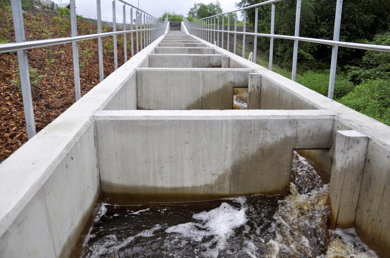 Tässä kuvassa vesi virtaa. Kirjoittajan mukaan Korpelan kalaportaissa ei ole ollut vettä tärkeimpänä taimenten nousukautena.