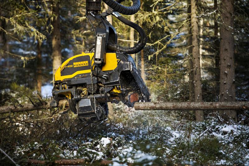 Puukauppa ei yllä viime vuoden tasolle, mutta Kala- ja Pyhäjokilaaksoissa puukaupan syksy on ollut muuta Suomea vilkkaampaa.
