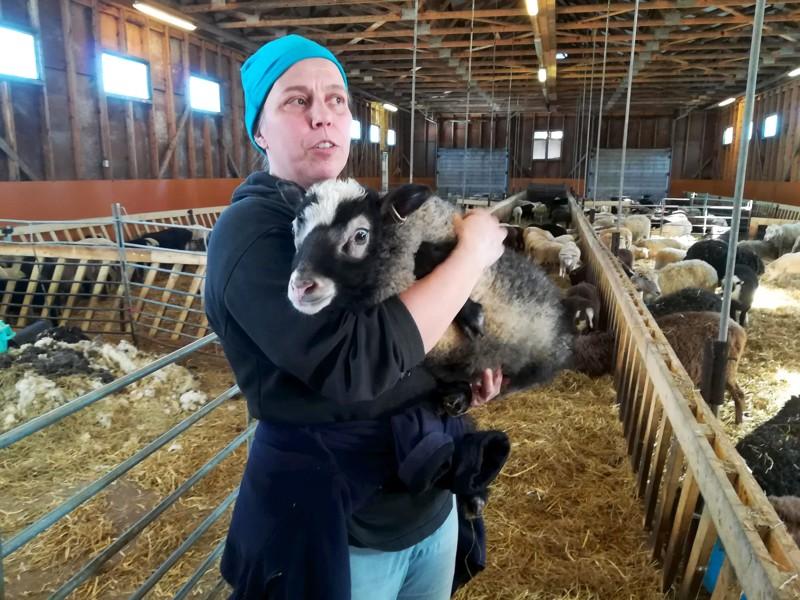 Isokummun lammastila palkittiin tämänvuotisena lammastilana Suomessa. Kuvassa yrittäjä Satu Kumpulainen.