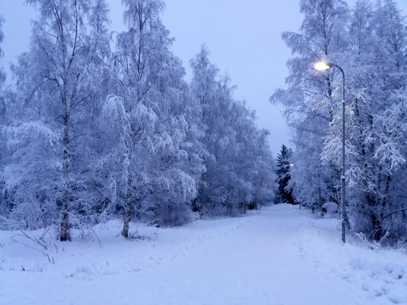 Lumen kuorruttama maisema.